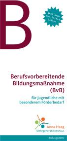 bvb_2012-1